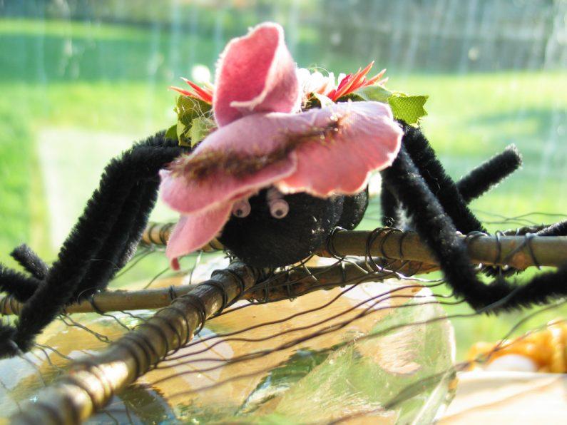 Edderkop i spind