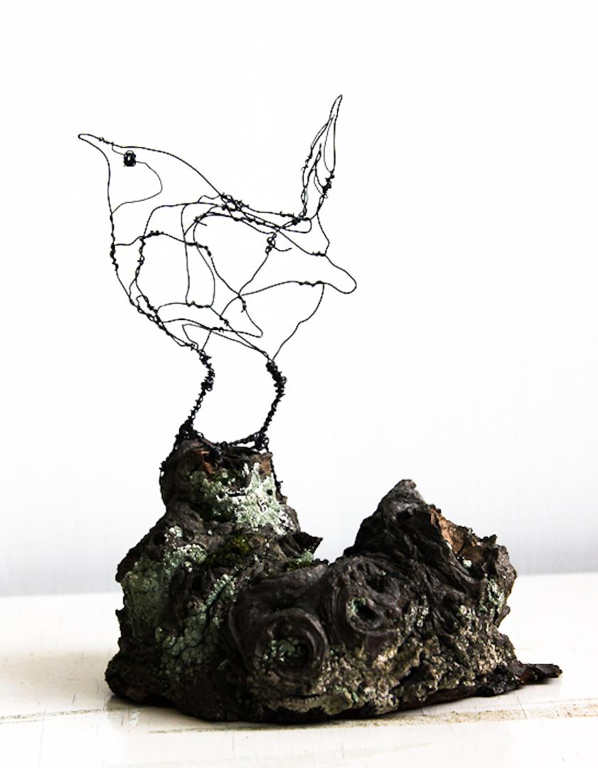 Gærdesmutte/Mignon DS Galerie - Bruzelles 2015