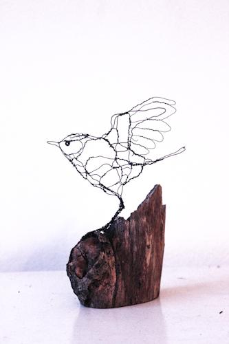 Blåmejse, - Art Zandra Galleriet, Göteborg
